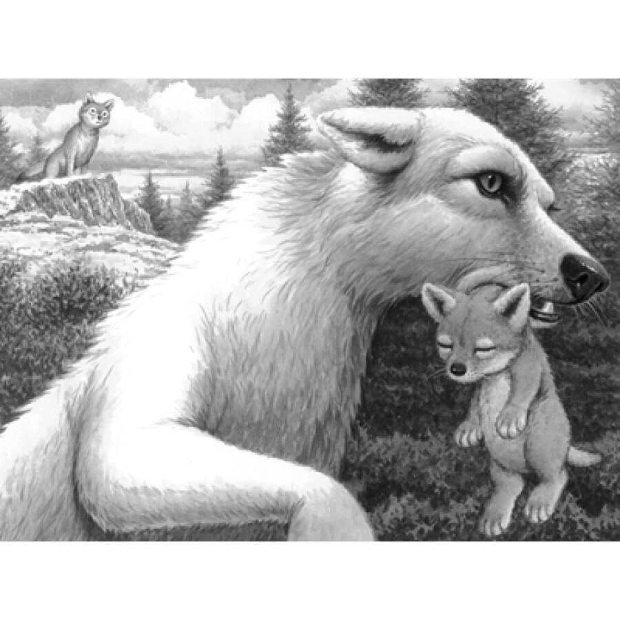 绝境狼王系列:影子(2)