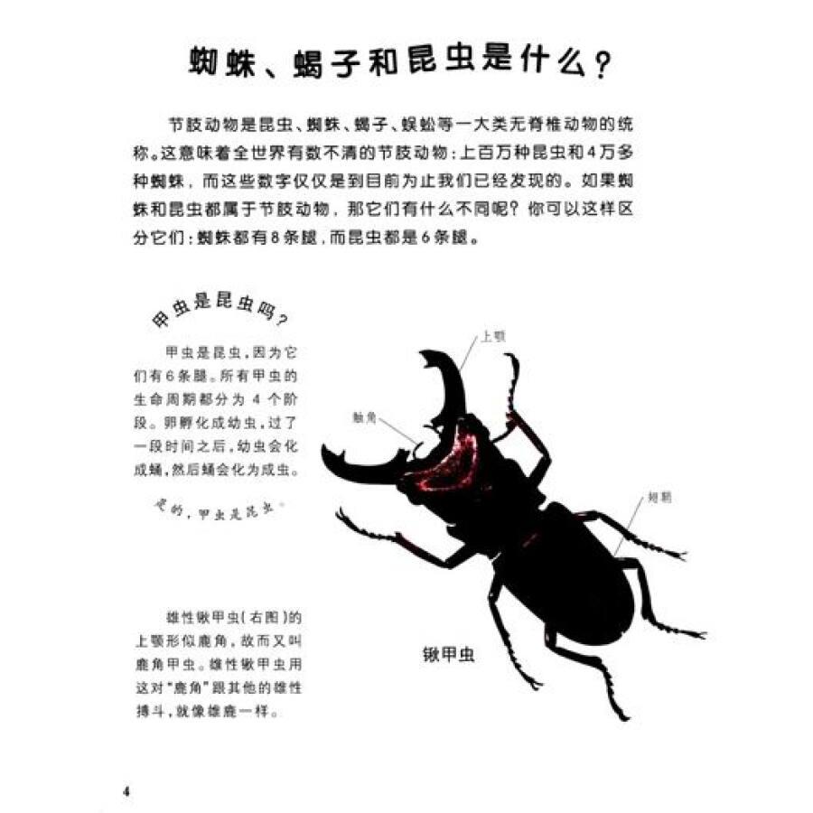 可怕的动物:蜘蛛,蝎子和昆虫
