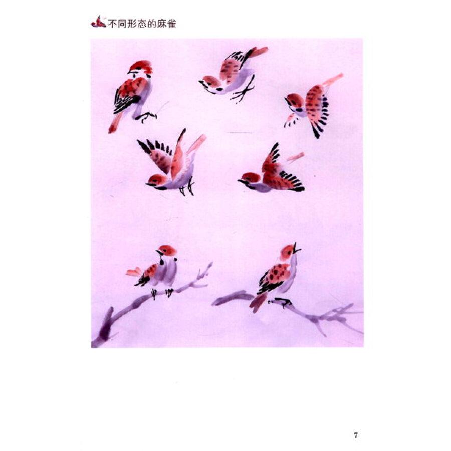 国画入门_国画入门:鸟
