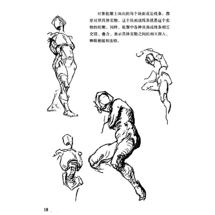 人体结构从医用解剖学分离出来,从美术的角度理解分析人体骨骼的构架