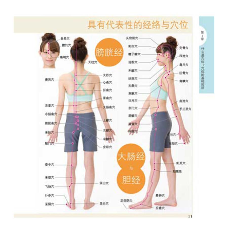 穴位按摩疗法的要点  准确找到穴位的方法  穴位按摩疗法的基本手法