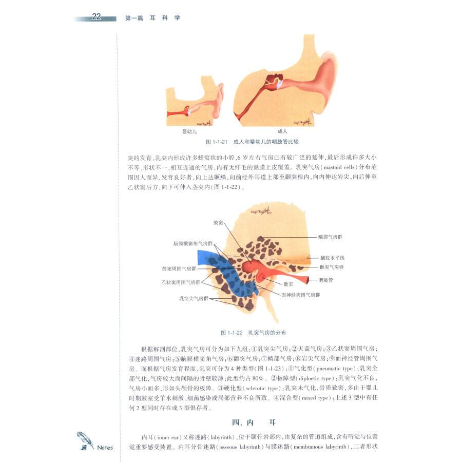 耳鼻咽喉头颈外科学(第3版)