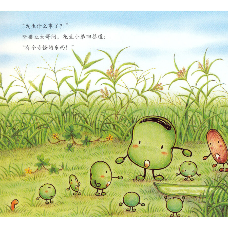 蚕豆大哥和长长的豆子