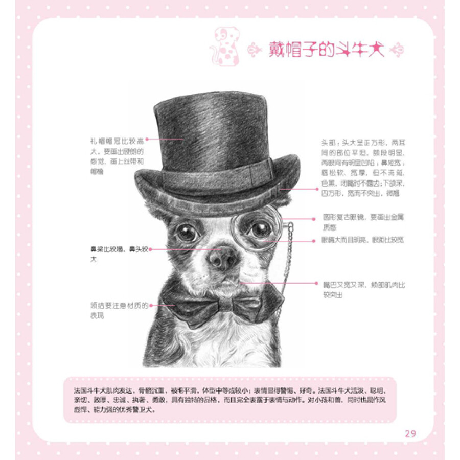《铅笔动物绘:35个动物的素描故事》(兔小米)【摘要