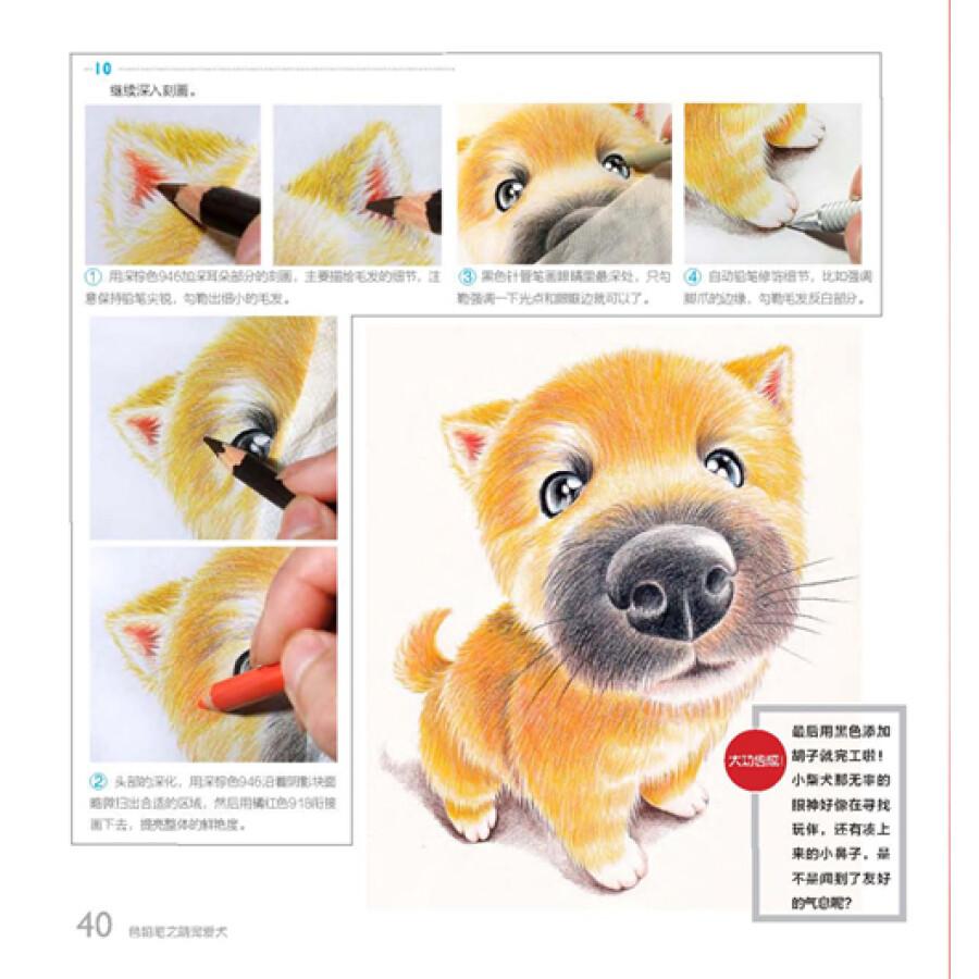 绘画 彩铅/铅笔画 我的手绘生活:色铅笔之萌宠爱犬