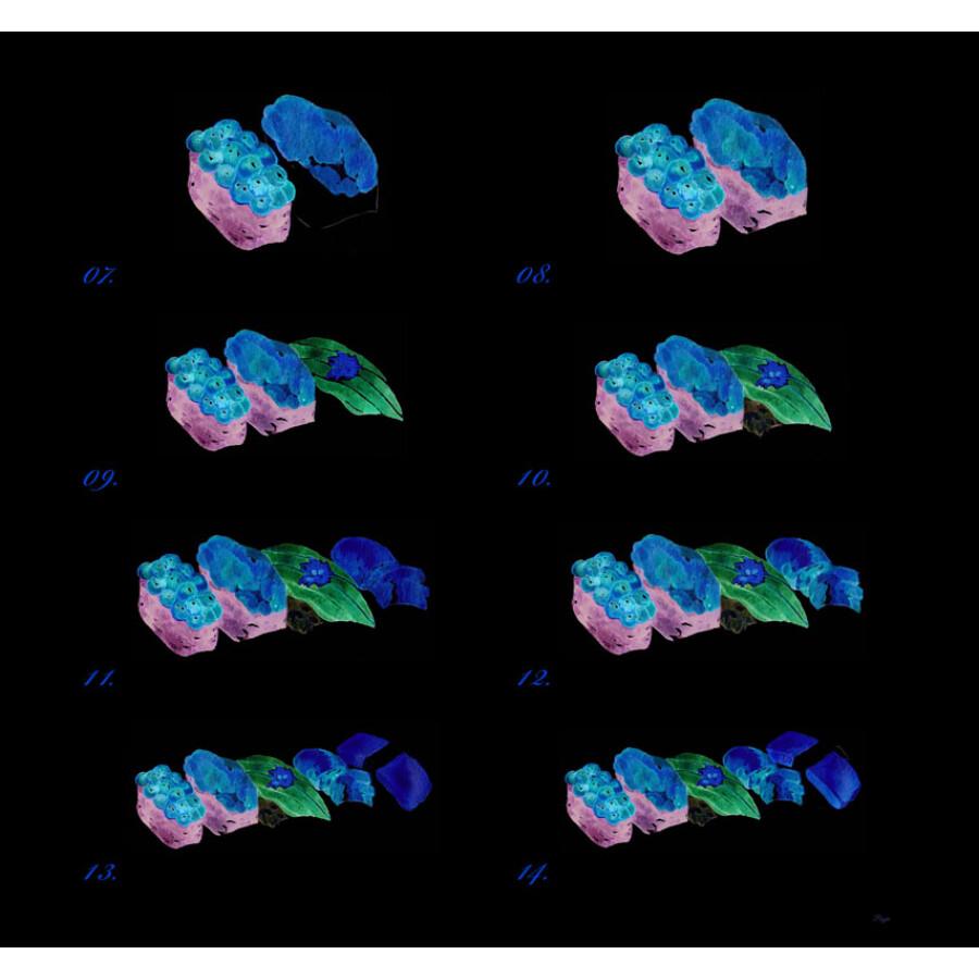 绘画 水粉/水彩 浪漫水彩课:环球美食手绘技法