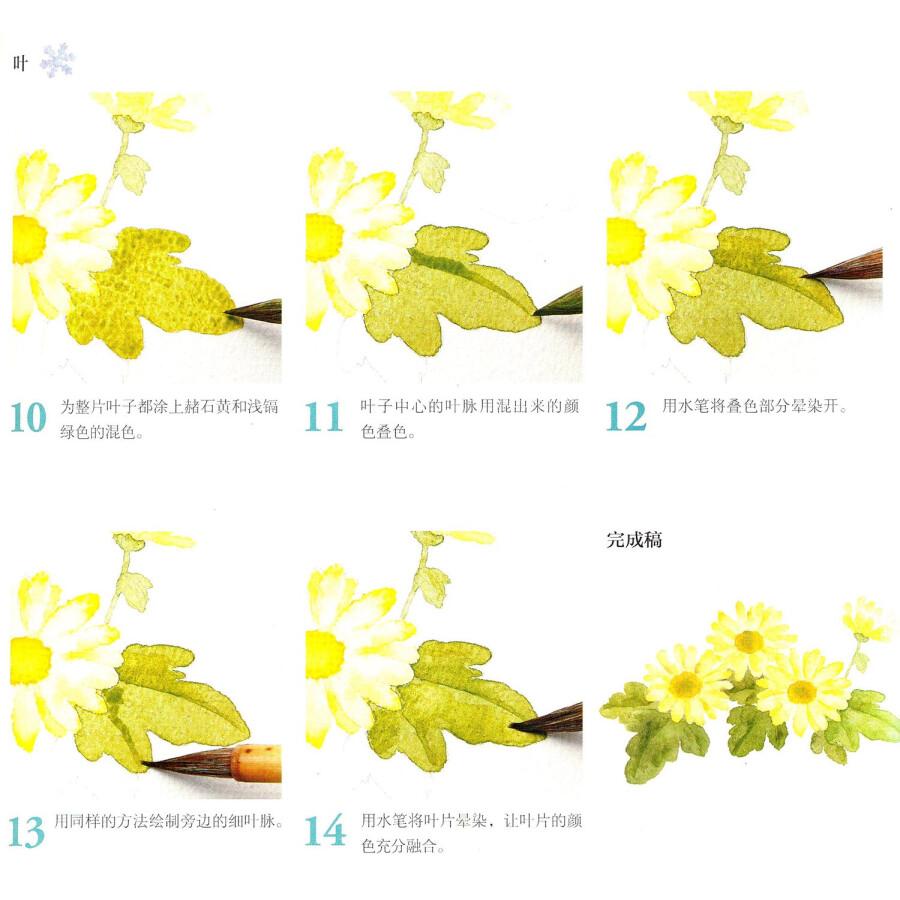 幸福四季水彩花园:春夏秋冬之花卉(套装共4册)图片
