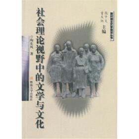 陶东风 社会理论视野中的文学与文化 比书网 网上购书新方...
