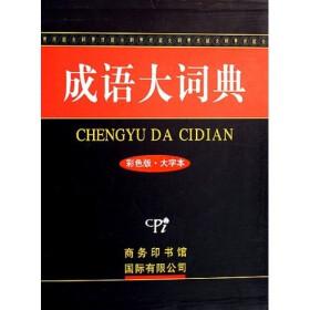 成语大词典(彩色版·大字本)