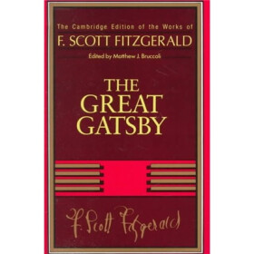 an analysis of the autobiographical elements in the great gatsby by f scott fitzgerald