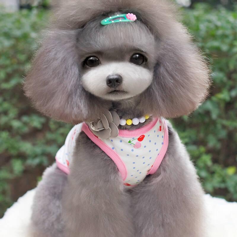 宠物狗狗衣服 泰迪贵宾比熊博美服饰 纯棉小清新背心