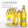 冰啤8度518ml*12瓶