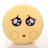 表情包创意抱枕动漫周边聊天毛绒玩具公仔送同学朋友生日礼物 可怜 3图片