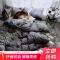 雅鹿·自由自在 四件套家纺 床上用品套件纯色活性印花被套床单枕套1.5/1.8米床被套200*230cm 深灰