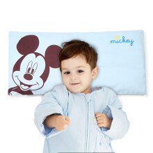 京东超市 迪士尼宝宝 Disney Baby 婴儿全荞麦壳枕头枕芯 新生儿童四季透气定型枕头婴幼儿用品小孩睡枕 粉色 荞麦枕蓝色