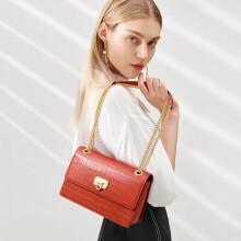 纽芝兰(NUCELLE)包包女包小众质感单肩斜挎包时尚百搭条纹链条小方包 190砖红色