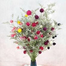 云南天然干花真花 其它发财果草莓果幸运果 客厅家居装饰摆设 情人草+31颗草莓球【混色】