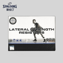 斯伯丁(SPALDING) 篮球网加粗比赛投篮网篮框网兜 8279SCNR红蓝白(单个装) 腿部阻力器