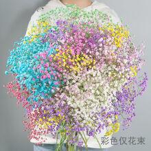 其它永生干花网红小花束带花瓶真花客厅插花网红家用装饰摆件 彩色满天星 送LED灯