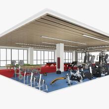 岱宇(DYACO)商用健身器材企事业单位团购单位健身房解决方案跑步机椭圆机综合力量训练健身器械