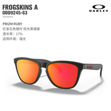 Oakley欧克利FROGSKINS青蛙皮休闲太阳眼镜经典系列复古潮人偏光 0OO9245-63