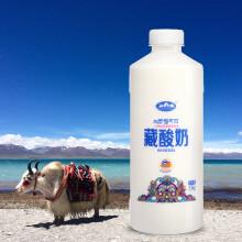 青海湖 藏酸奶原味 酸奶1kg  含15%牦牛奶 乳酸菌 0添加剂