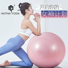 哈他专业瑜伽球 65cm加厚防爆瑜珈塑形健身球 孕妇分娩球  加强版―脂粉(含全套配件)