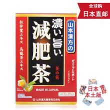 山本汉方  保健食品饮料茶 日本直邮 浓美减肥茶 10gx24包