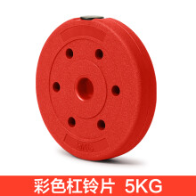 虹博实重足重包胶哑铃片  环保杠铃片 2.8-3.0通用片  健身器材 升级彩胶片(10斤1片)