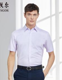 雅戈尔 衬衫男士 2019春季青年男休闲正装衬衫 GSDP100168LBA 粉紫提花 43