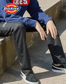 dickies男式修身小脚裤潮流刺绣弹力休闲裤q舒适耐磨163M40EC11 卡其色 28