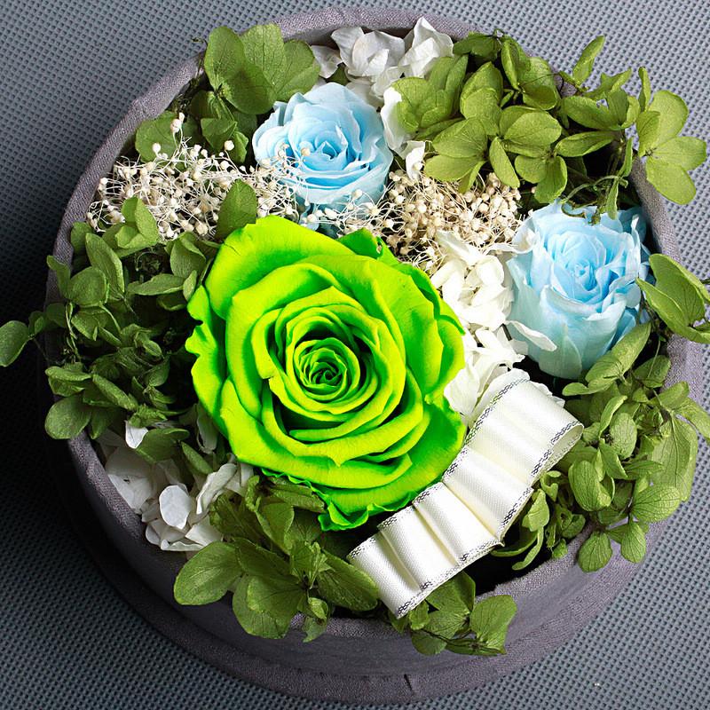 绿玫瑰手绘