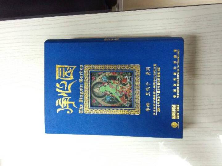 净心园:李娜、黑鸭子、龚玥(3CD) 晒单图