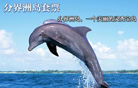 节假日通用,带你领略海南岛气候的分水岭,感受海豚表演的乐趣!