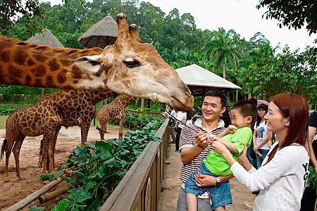 广州长隆野生动物园——游奇妙的石屋 ,探索奇妙的动物
