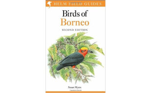 Birds of Borneo