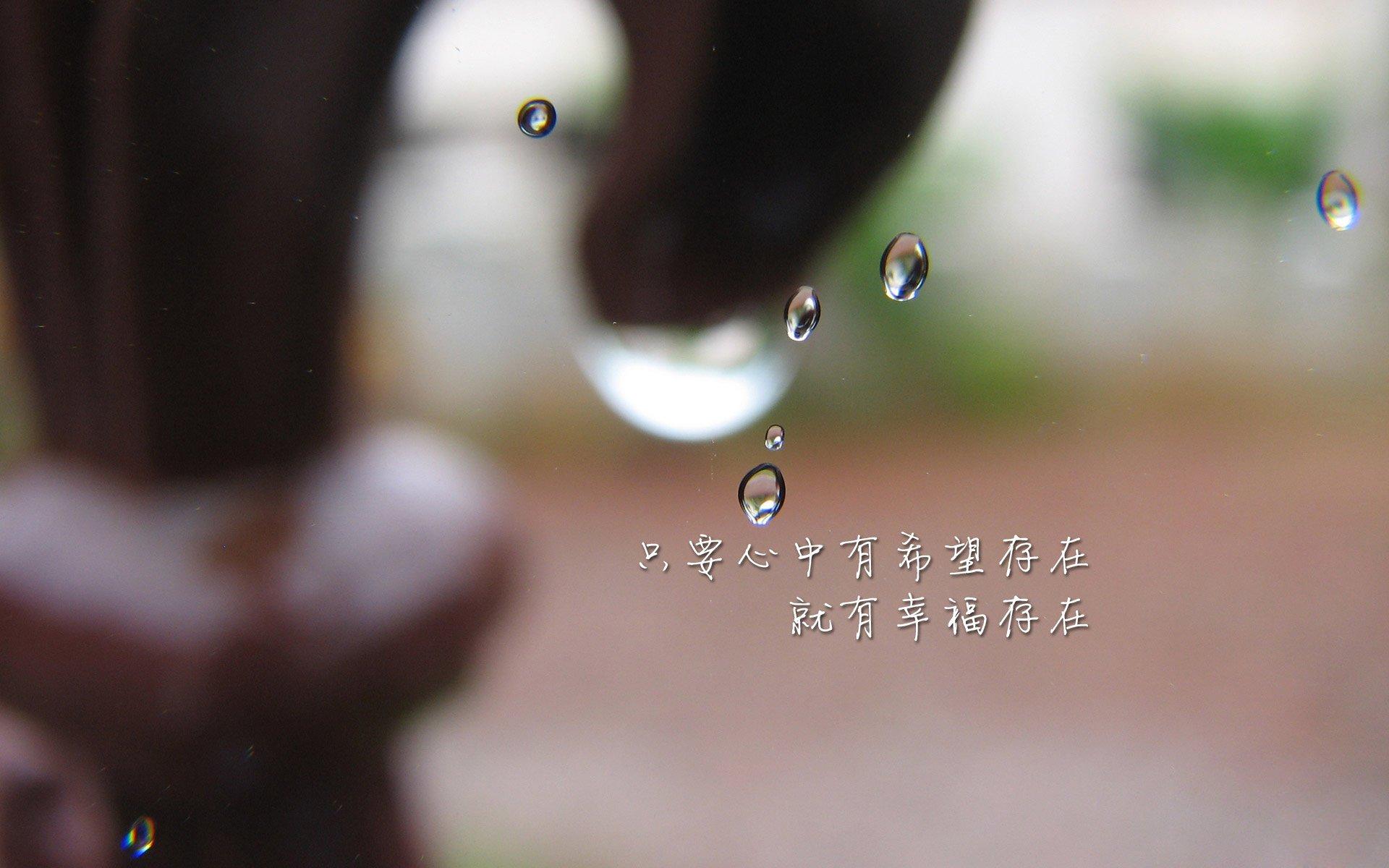 便宜香港vps优惠(cheapwindowsvps)