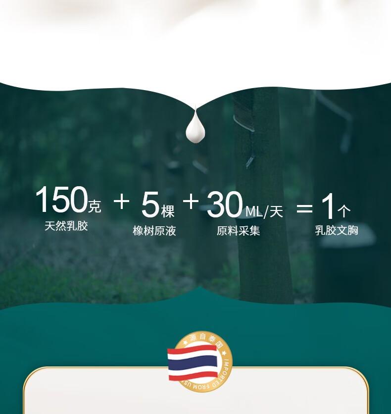 泰国乳胶棉运动内衣女无钢圈小胸聚拢无痕背心式胸罩蕾丝美背文胸薄【蕾丝款】奶油绿(单件)L(建议100-120斤75BCD&80AB