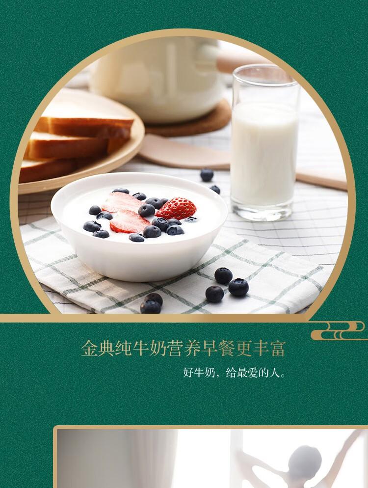 25973-伊利金典纯牛奶饮品250mlx12盒\/提儿童学生成人老人早餐奶原味常温(礼盒装)-详情图