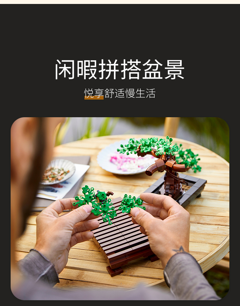 乐高(LEGO)积木 创意百变高手系列 18岁+【D2C旗舰店限定款】 10281 盆景
