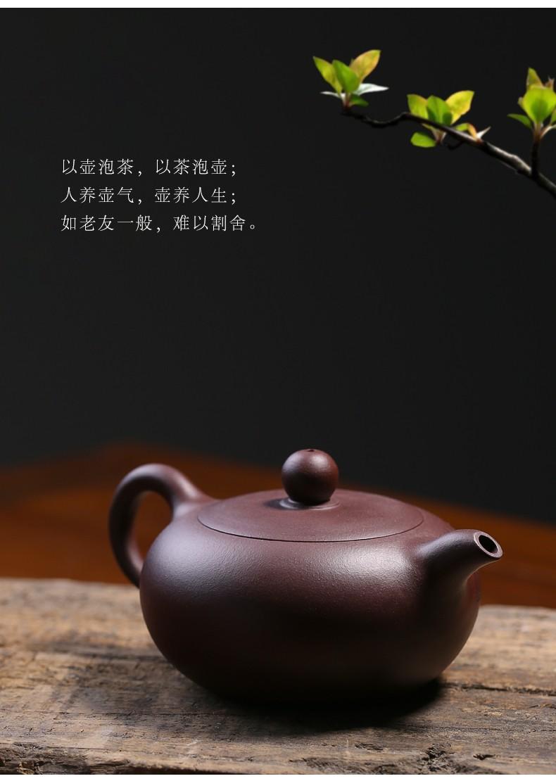 倒把西施纯手工紫砂壶宜兴名家正宗老紫泥山水扁玉壶大容量家用茶具