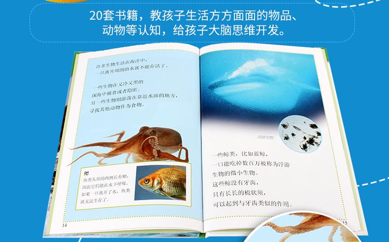 《DK兒童目擊者·預備級·學習閱讀》(套裝共20冊)