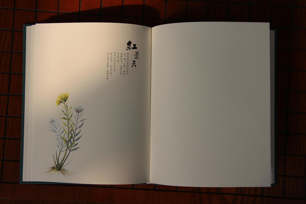 筆記本設計_筆記本外殼設計_vi設計模板筆記本