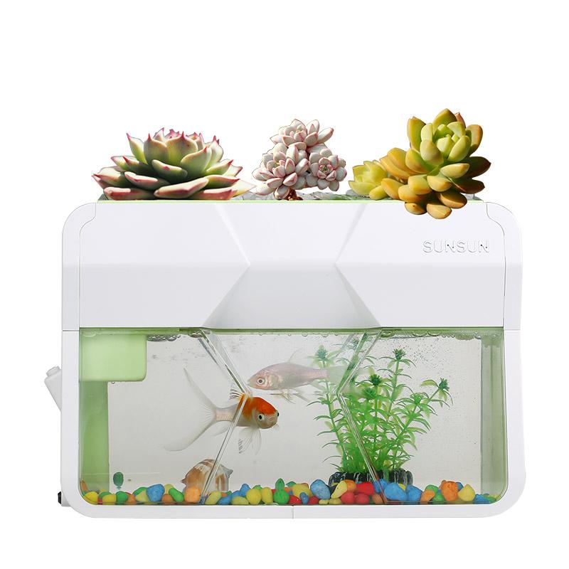 sensen acrylic mini aquarium aquarium simple aquarium grass goldfish