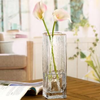 DELISOGA 玻璃花瓶 锤纹描金边大号 鲜花干花插花水培绿植富贵竹 欧式现代简约创意 轻奢客厅家居摆件饰品