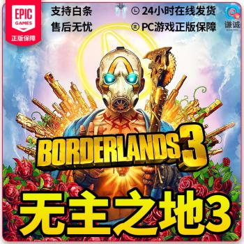 Epic PC正版游戏 官网代购Borderlands3 无主之地3 其他