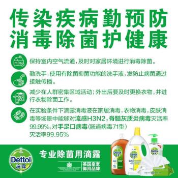 滴露(Dettol)消毒液1.2L*2 多功能孕妇宝宝家用衣物除菌 家用衣物除菌宠物地板皮肤伤口消毒