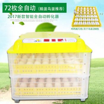 自制鸡蛋孵化器_自制鸡蛋孵化器