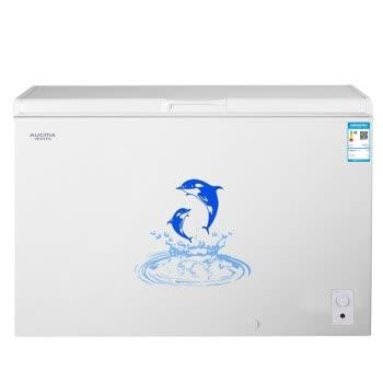 澳柯玛(AUCMA)256升冰柜