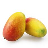 海南红贵妃芒果单果重100g-200g  时令新鲜水果红金龙芒果 10斤装